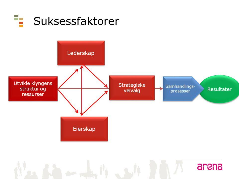 Resultater Suksessfaktorer Utvikle klyngens struktur og ressurser Samhandlings- prosesser Samhandlings- prosesser Eierskap Lederskap Strategiske veiva