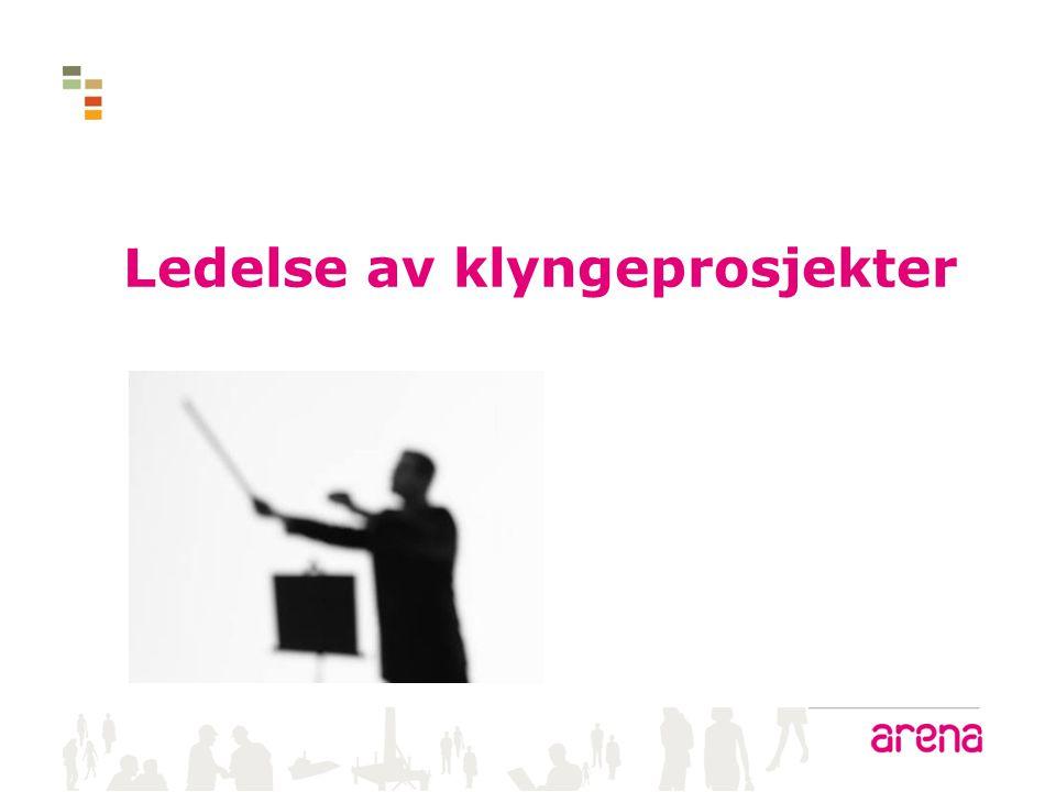 Organisering av klyngeprosjekter – en viktig suksessfaktor Klyngen Klyngeprosjektet Fasilitator/Prosjektleder Hvilke prinsipper og modeller for ledelse er mest effektive.