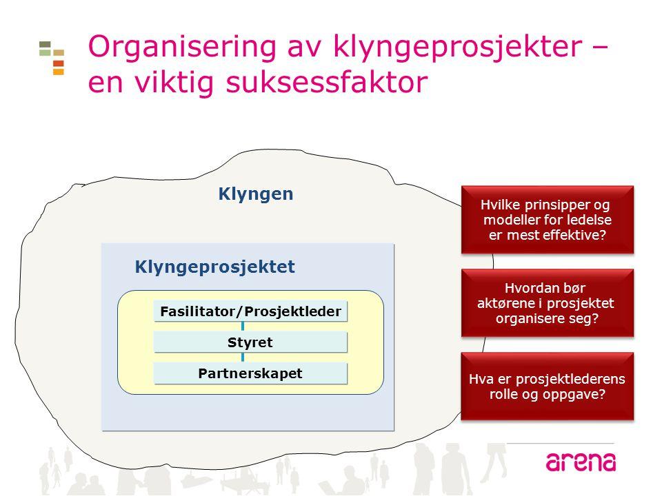 Organisering av klyngeprosjekter – en viktig suksessfaktor Klyngen Klyngeprosjektet Fasilitator/Prosjektleder Hvilke prinsipper og modeller for ledels