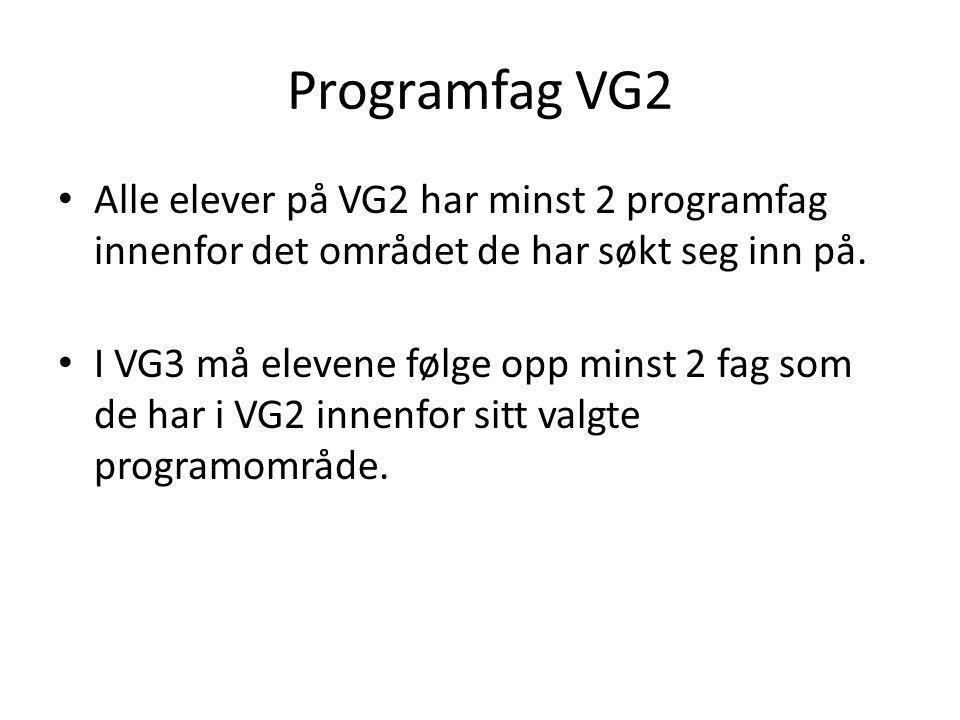 Programfag VG2 • Alle elever på VG2 har minst 2 programfag innenfor det området de har søkt seg inn på. • I VG3 må elevene følge opp minst 2 fag som d
