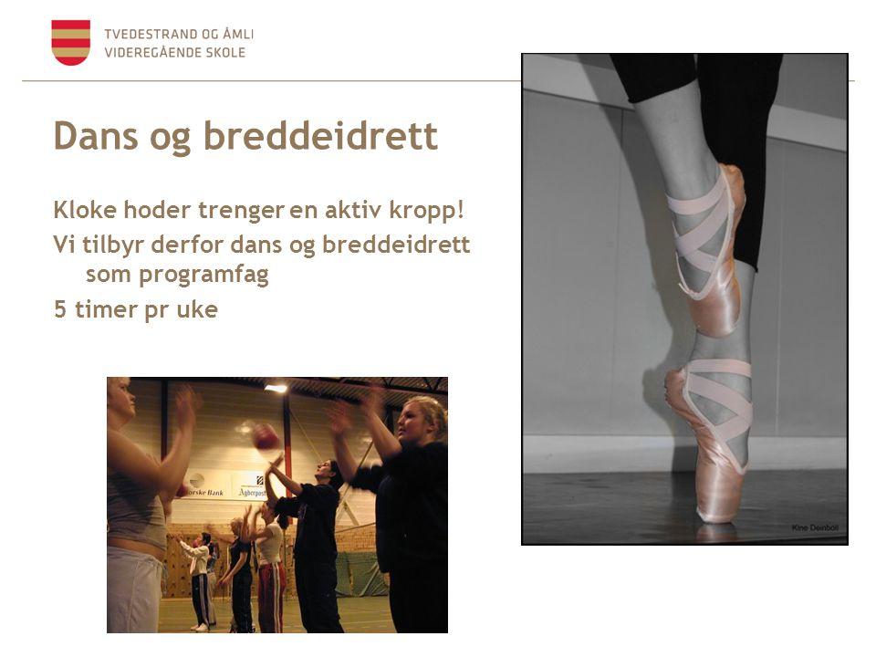 Dans og breddeidrett Kloke hoder trenger en aktiv kropp! Vi tilbyr derfor dans og breddeidrett som programfag 5 timer pr uke