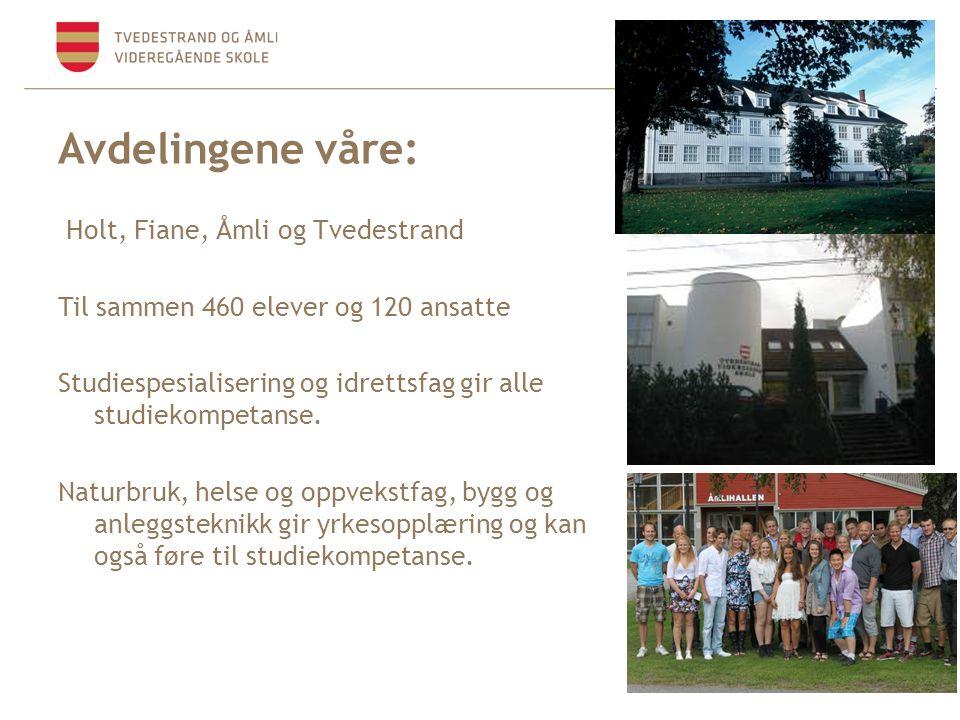 Avdelingene våre: Holt, Fiane, Åmli og Tvedestrand Til sammen 460 elever og 120 ansatte Studiespesialisering og idrettsfag gir alle studiekompetanse.