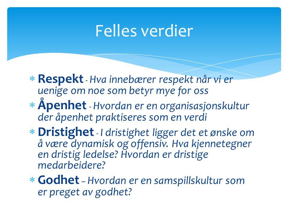  Respekt - Hva innebærer respekt når vi er uenige om noe som betyr mye for oss  Åpenhet - Hvordan er en organisasjonskultur der åpenhet praktiseres som en verdi  Dristighet - I dristighet ligger det et ønske om å være dynamisk og offensiv.