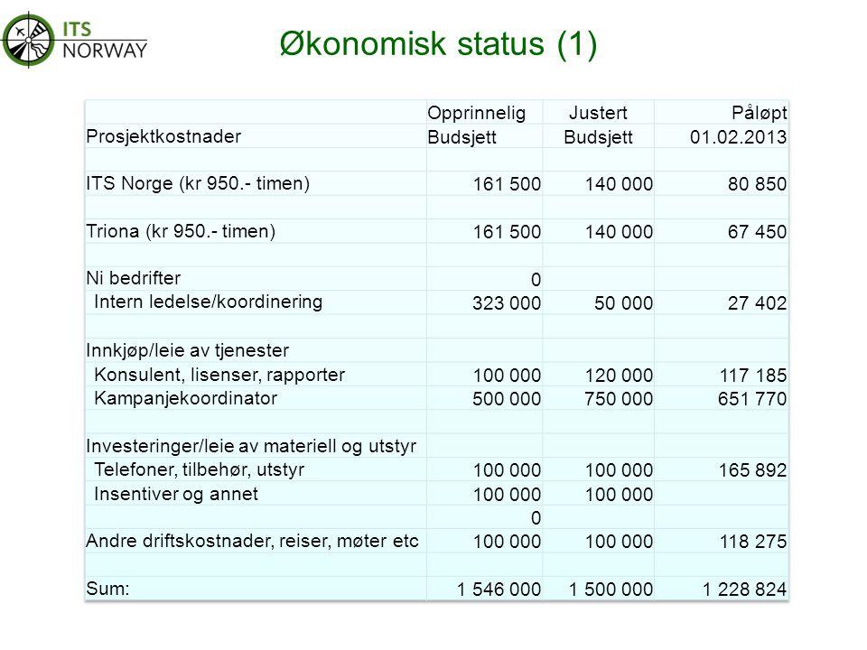 Økonomisk status (1)