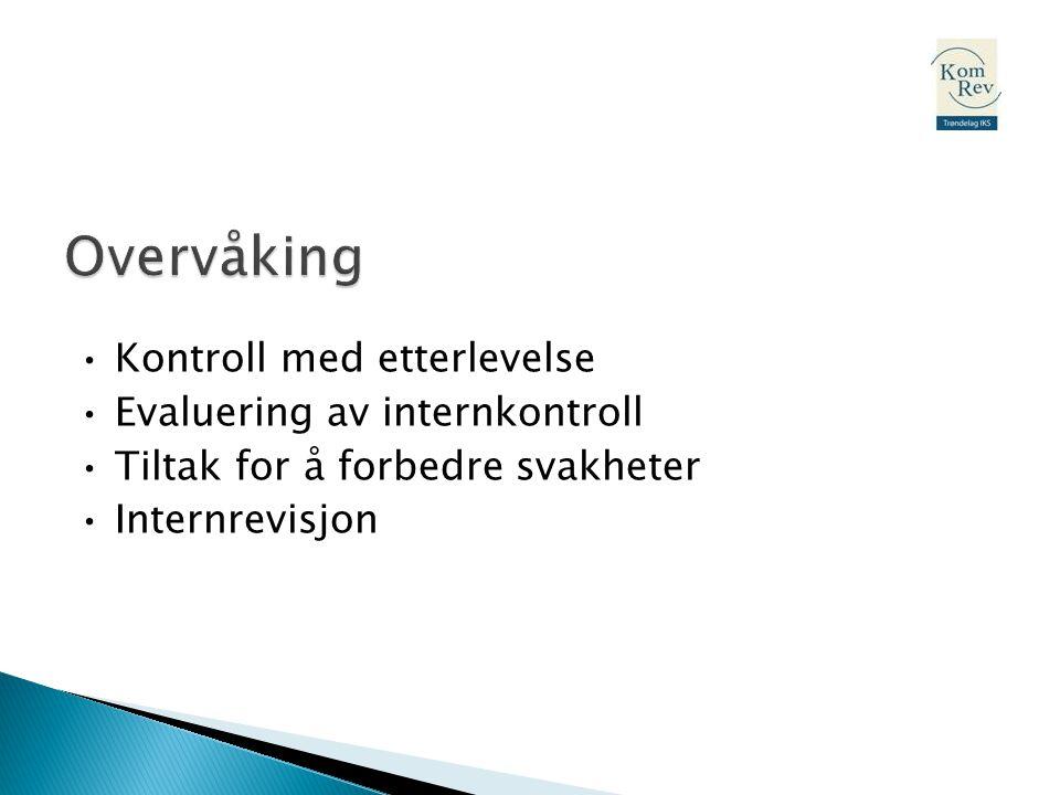 • Kontroll med etterlevelse • Evaluering av internkontroll • Tiltak for å forbedre svakheter • Internrevisjon