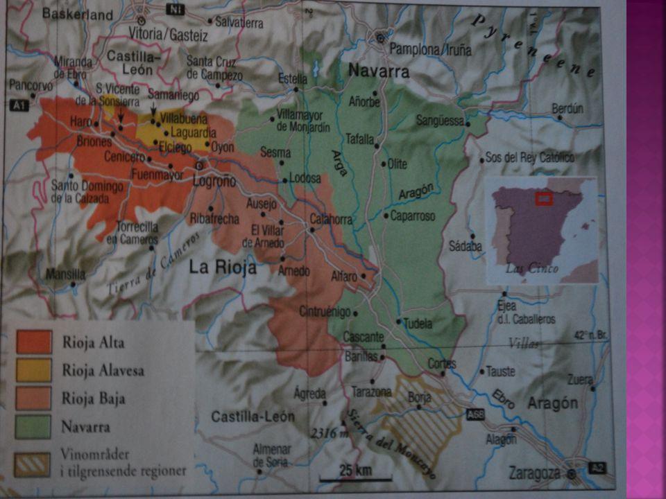Navarras vinmarker strekker seg mellom elven Ebro Og Pyreneene.