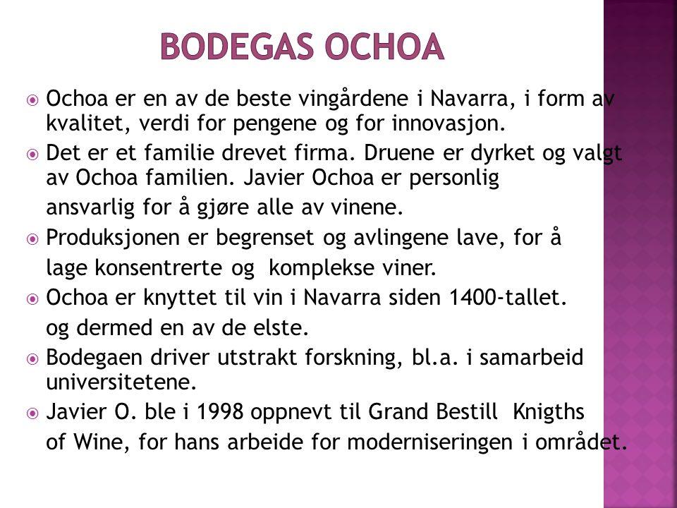  Ochoa er en av de beste vingårdene i Navarra, i form av kvalitet, verdi for pengene og for innovasjon.