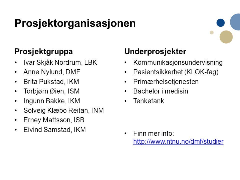 Prosjektorganisasjonen Prosjektgruppa •Ivar Skjåk Nordrum, LBK •Anne Nylund, DMF •Brita Pukstad, IKM •Torbjørn Øien, ISM •Ingunn Bakke, IKM •Solveig K