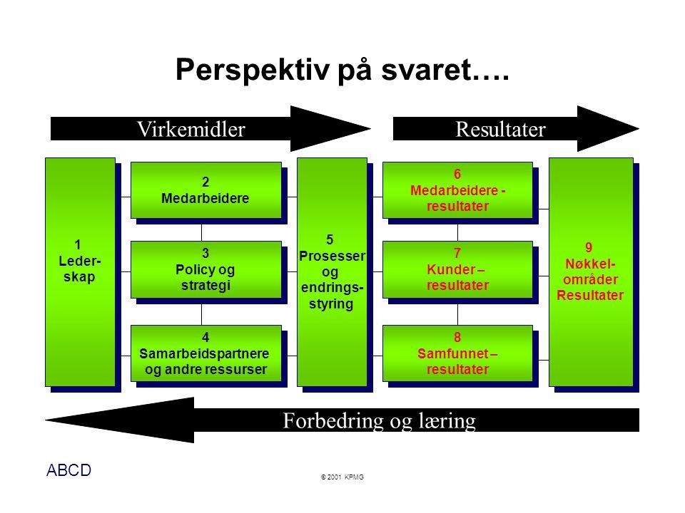 ABCD © 2001 KPMG Perspektiv på svaret…. 9 Nøkkel- områder Resultater 9 Nøkkel- områder Resultater 6 Medarbeidere - resultater 6 Medarbeidere - resulta