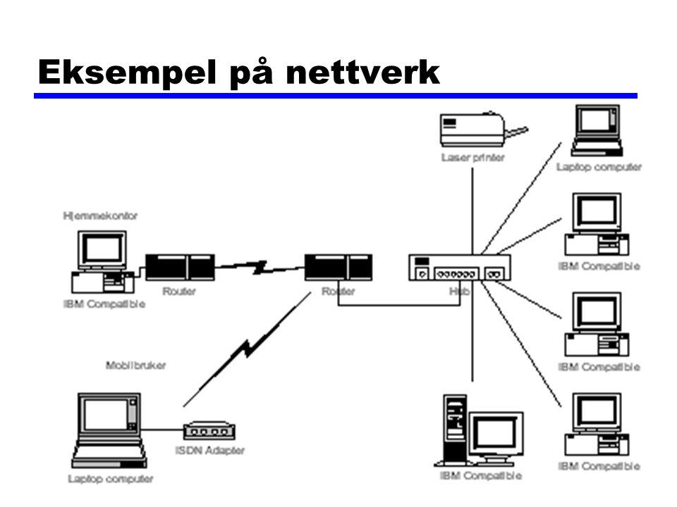 Datakom høsten 200265 Eksempel på nettverk