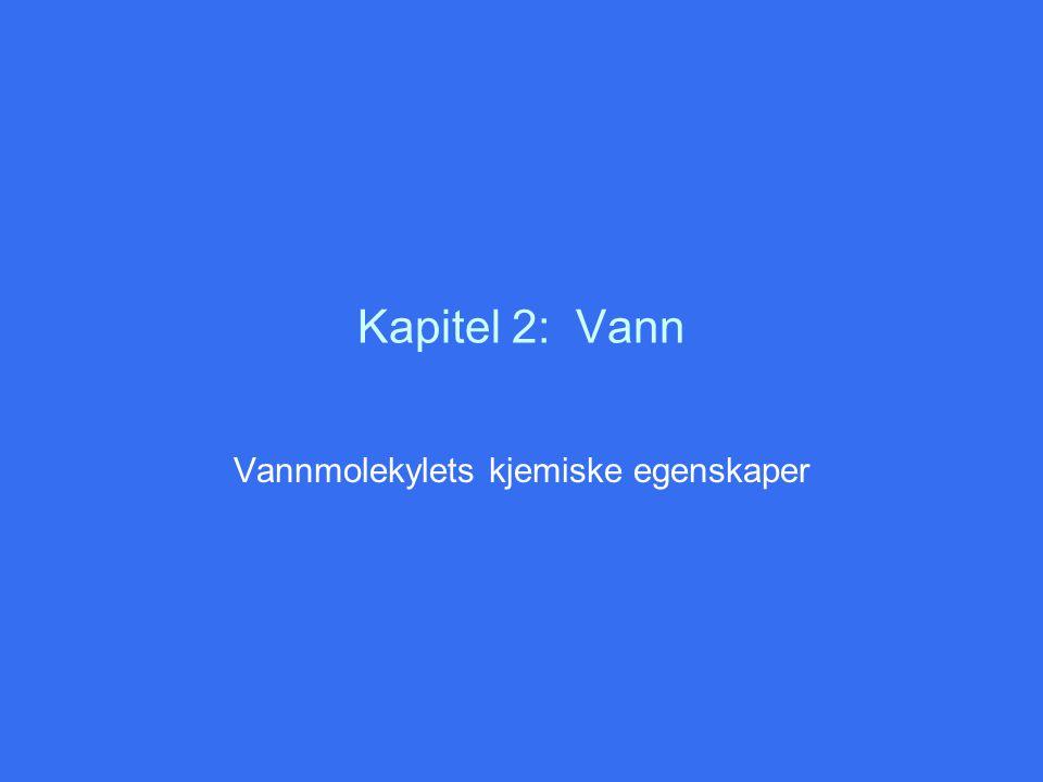 Kapitel 2: Vann Vannmolekylets kjemiske egenskaper