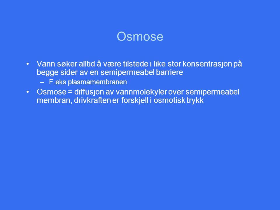 Osmose •Vann søker alltid å være tilstede i like stor konsentrasjon på begge sider av en semipermeabel barriere –F.eks plasmamembranen •Osmose = diffu