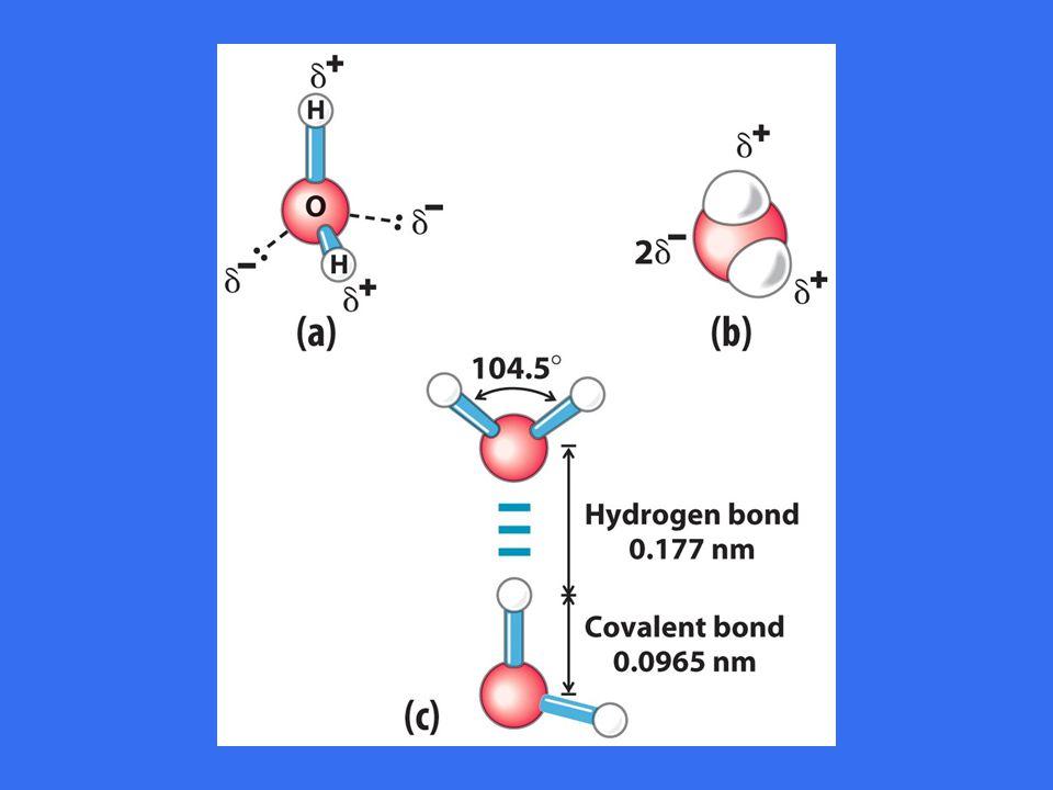 Vannmolekylet er en dipol •Tetrahedrisk orientering på –Bindingene til hydrogen –To elektronpar •Bindingsvinkel 104,5 o •H 2 O danner en dipol fordi oksygen er mere elektronegativ enn hydrogen => –Positiv delladning ved hydrogen –Negativ delladning ved oksygen