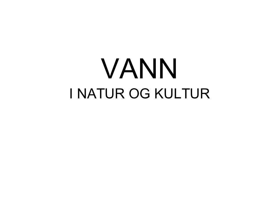 Skolen vår •Vi går på Olav Duun videregående skole •Skolen ligger i Namsos •Skolen har elever fra hele Namdalen •Skolen har 916 elever fordelt på 12 studieretninger •Namsos ligger et stykke sør for midten av Norge •Vi har mye natur og mye regn hos oss