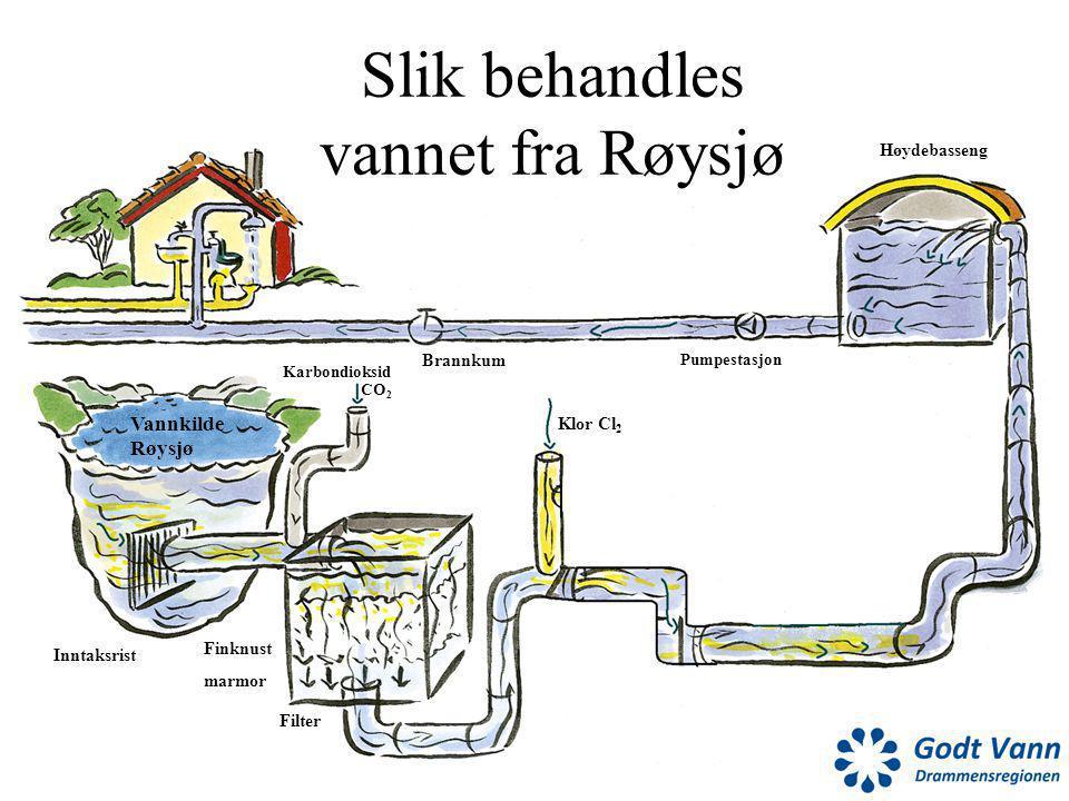 Vannkilde Røysjø Inntaksrist Karbondioksid Brannkum Pumpestasjon Høydebasseng Klor Cl 2 Finknust marmor Filter CO 2 Slik behandles vannet fra Røysjø