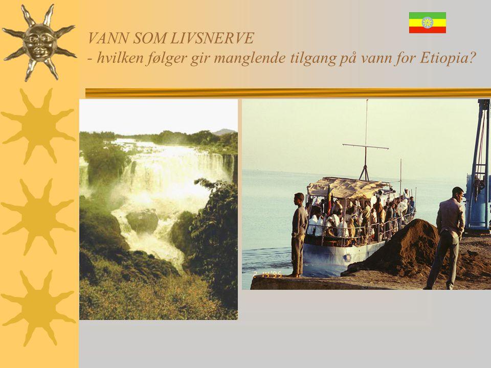 VANN SOM LIVSNERVE - hvilken følger gir manglende tilgang på vann for Etiopia? • Kvinnene henter vann der • NB! Det bor krokodiller der