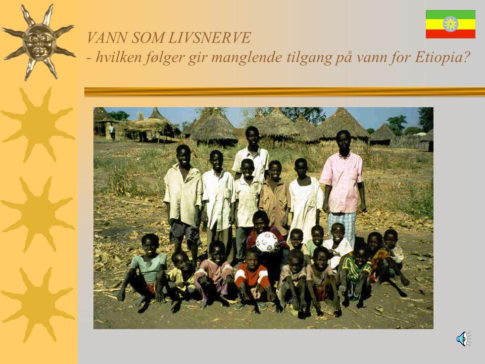 VANN SOM LIVSNERVE - hvilken følger gir manglende tilgang på vann for Etiopia?  Konklusjon:  Jo mer underutviklet et land er, jo mer er de prisgitt