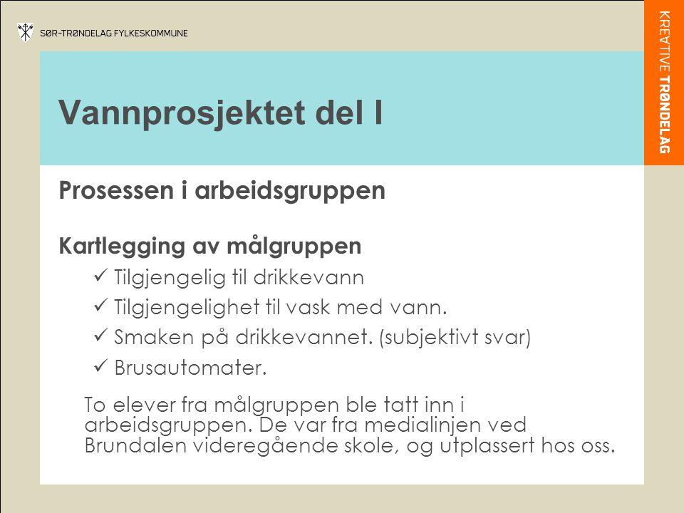 Vannprosjektet del II Samarbeidspartnere:  Maj Elin Svendahl daglig leder i NIF.