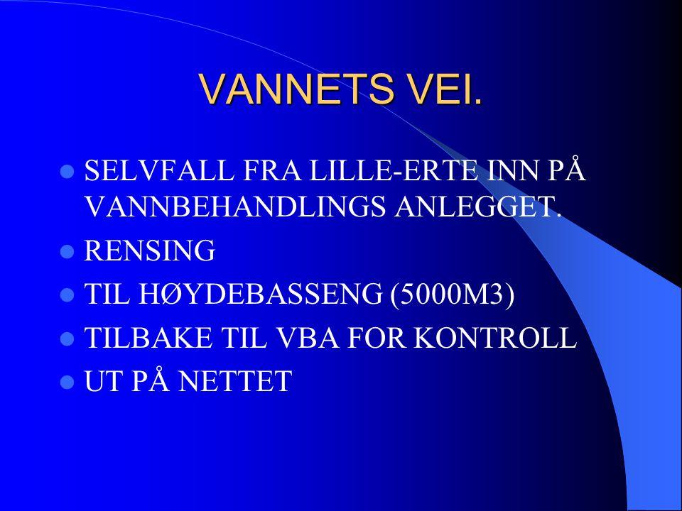 Halden kommune Teknisk drift Lille Erte Vannbehandlingsanlegg Mars 1999 VANNET BLIR HENTET 200M UT PÅ 13M DYP 183 moh.