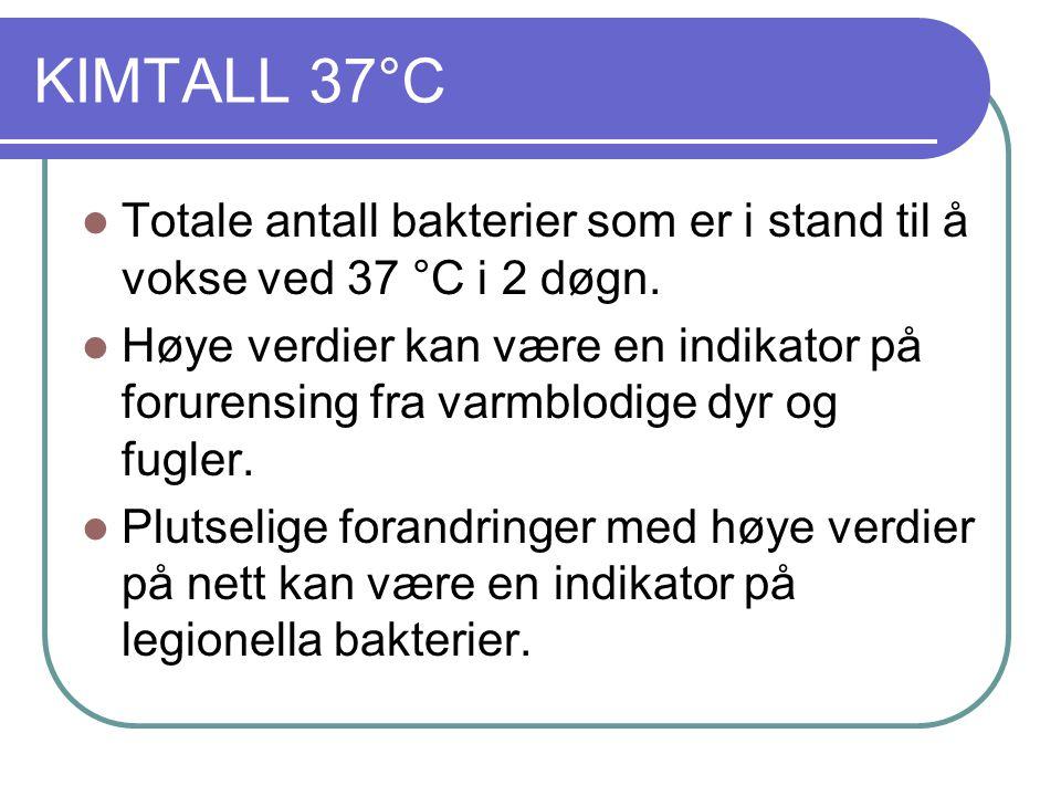 KIMTALL 37°C  Totale antall bakterier som er i stand til å vokse ved 37 °C i 2 døgn.