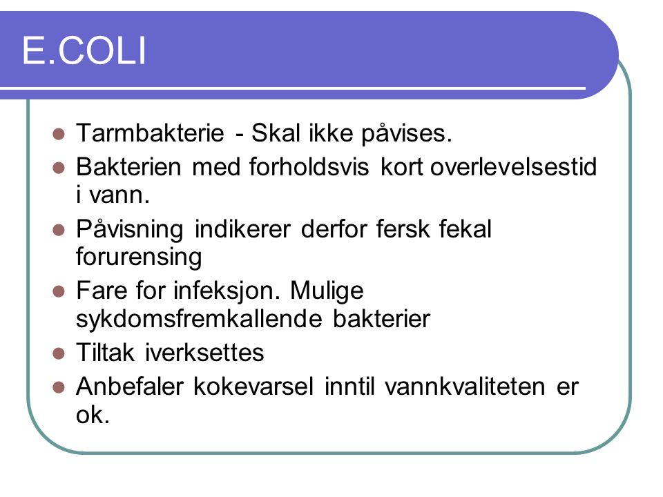 E.COLI  Tarmbakterie - Skal ikke påvises.  Bakterien med forholdsvis kort overlevelsestid i vann.  Påvisning indikerer derfor fersk fekal forurensi
