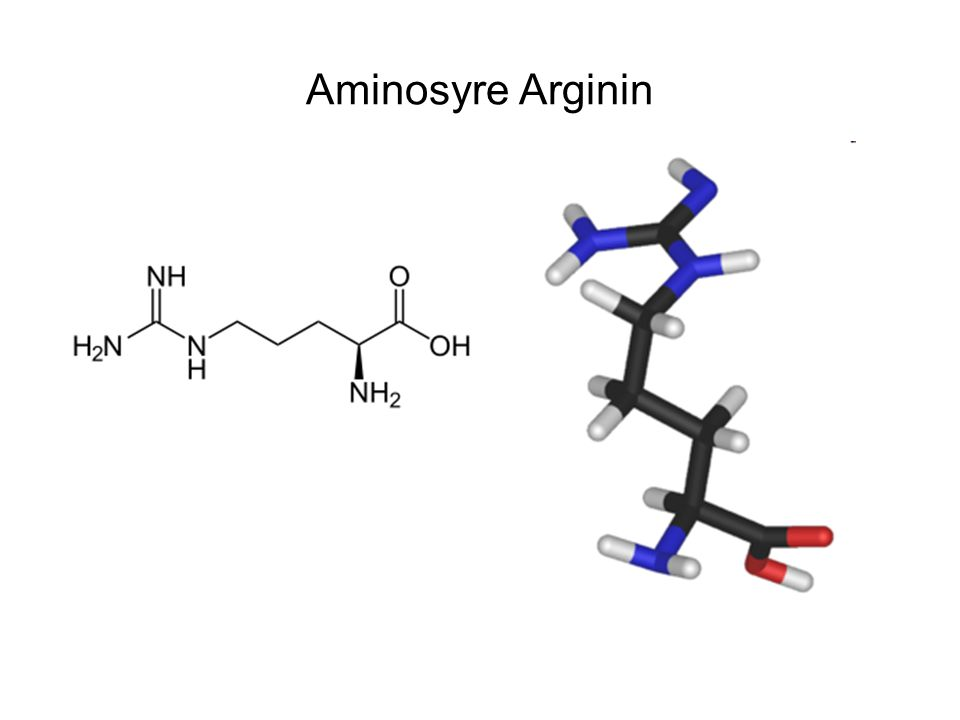 Aminosyre Arginin