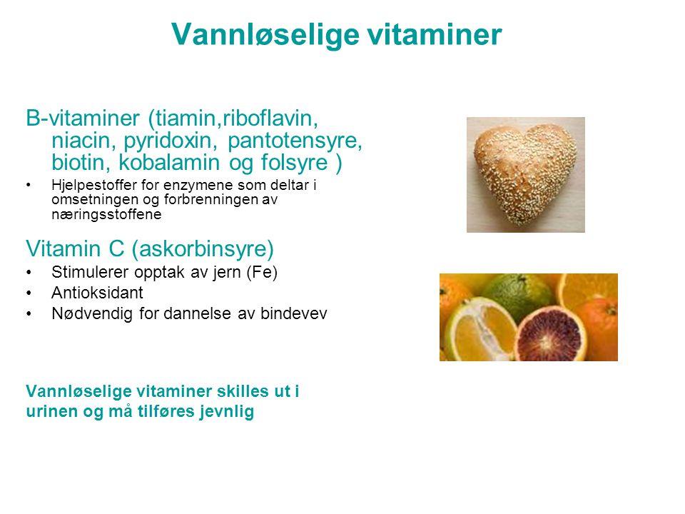Vannløselige vitaminer B-vitaminer (tiamin,riboflavin, niacin, pyridoxin, pantotensyre, biotin, kobalamin og folsyre ) •Hjelpestoffer for enzymene som deltar i omsetningen og forbrenningen av næringsstoffene Vitamin C (askorbinsyre) •Stimulerer opptak av jern (Fe) •Antioksidant •Nødvendig for dannelse av bindevev Vannløselige vitaminer skilles ut i urinen og må tilføres jevnlig