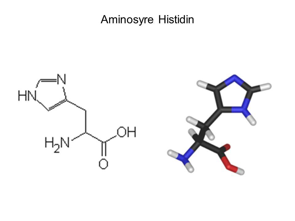 Dannelse av peptidbinding •Bindingen mellom to aminosyrene er en elektronparbinding som kalles peptidbinding.