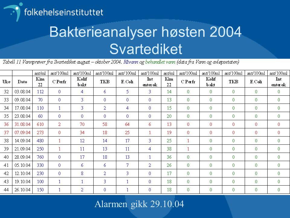 Bakterieanalyser høsten 2004 Svartediket Alarmen gikk 29.10.04