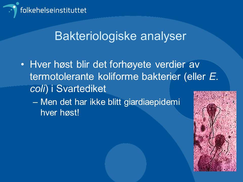 Bakteriologiske analyser •Hver høst blir det forhøyete verdier av termotolerante koliforme bakterier (eller E.
