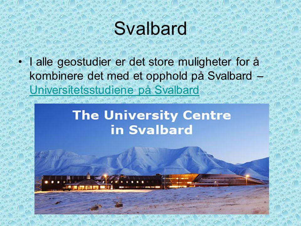 Svalbard •I alle geostudier er det store muligheter for å kombinere det med et opphold på Svalbard – Universitetsstudiene på Svalbard Universitetsstud