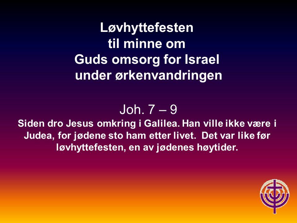 Løvhyttefesten til minne om Guds omsorg for Israel under ørkenvandringen Joh.