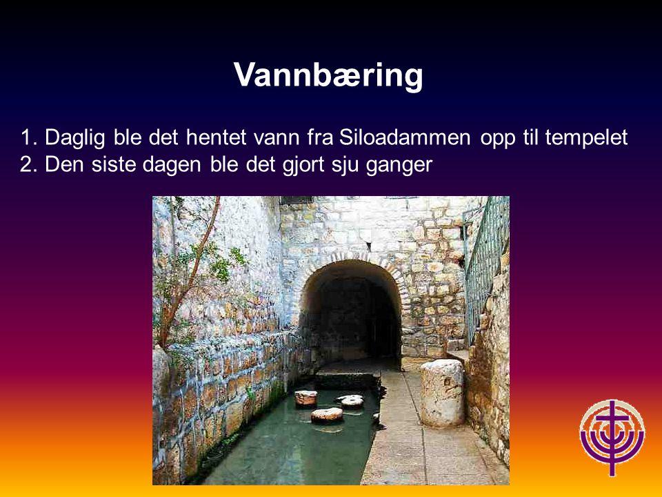 Vannbæring 1.Daglig ble det hentet vann fra Siloadammen opp til tempelet 2.Den siste dagen ble det gjort sju ganger