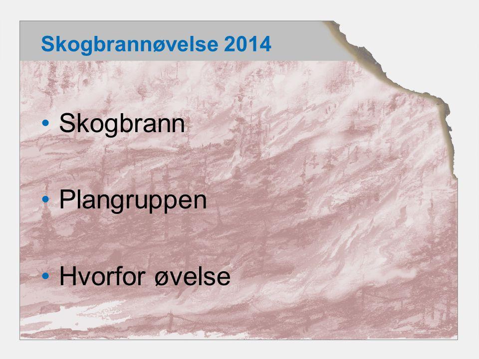 Skogbrannøvelse 2014 •Skogbrann •Plangruppen •Hvorfor øvelse