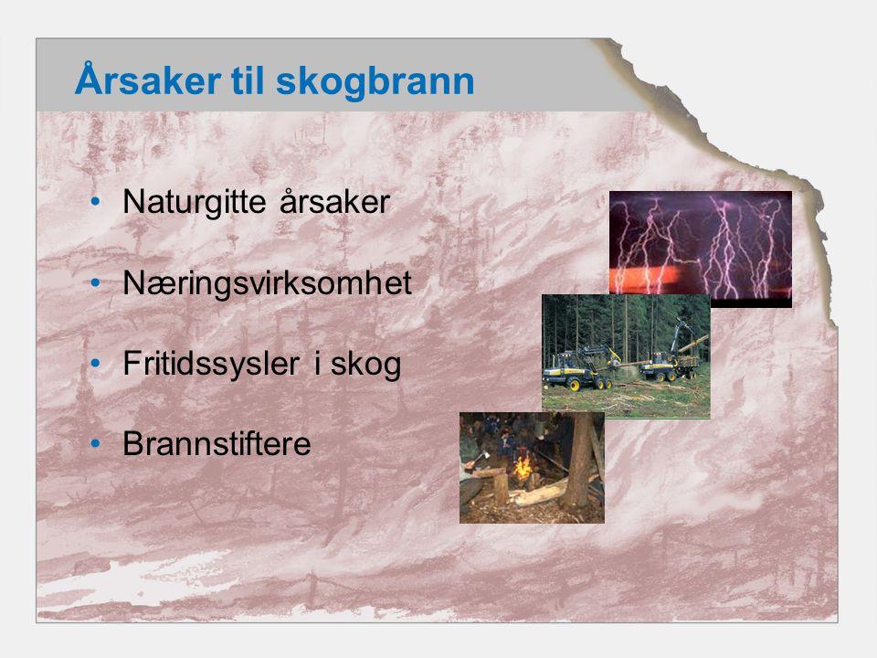 Årsaker til skogbrann •Naturgitte årsaker •Næringsvirksomhet •Fritidssysler i skog •Brannstiftere