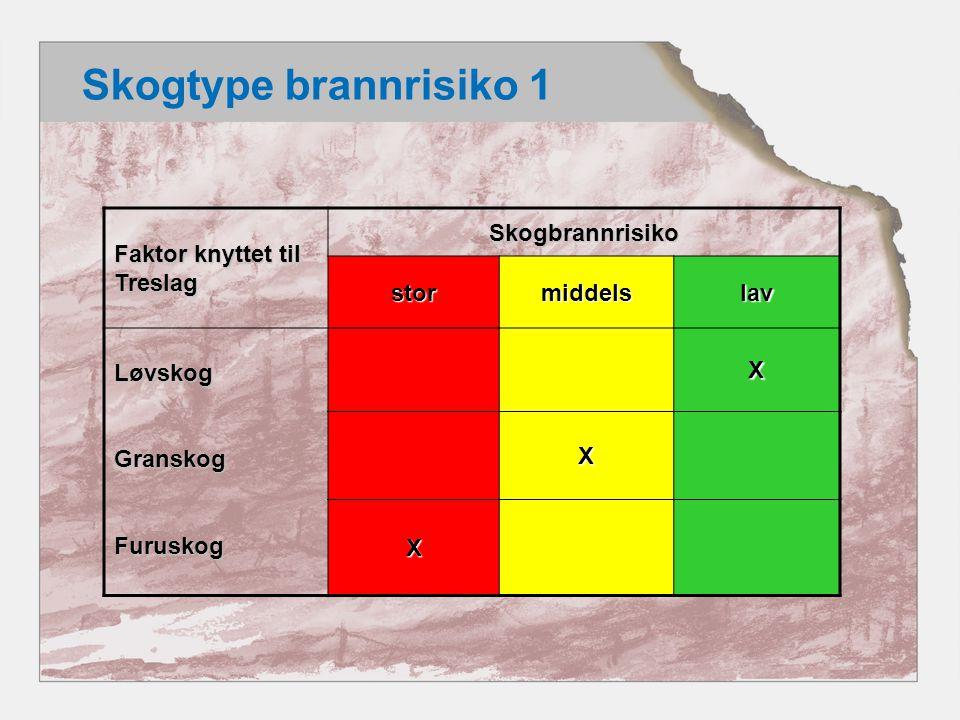 Skogtype brannrisiko 2 Faktor knyttet til Alder Skogbrannrisikostormiddelslav Gammel skog Middelalder (oppkvistet) Ung og yngre skog X X X