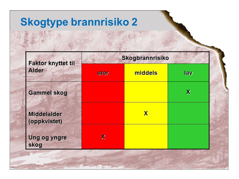 Skogtype brannrisiko 3 Faktor knyttet til Skoggrunn Skogbrannrisikostormiddelslav Dyp skogsjord Middels dyp skogjord Grunnlendt mark X X X
