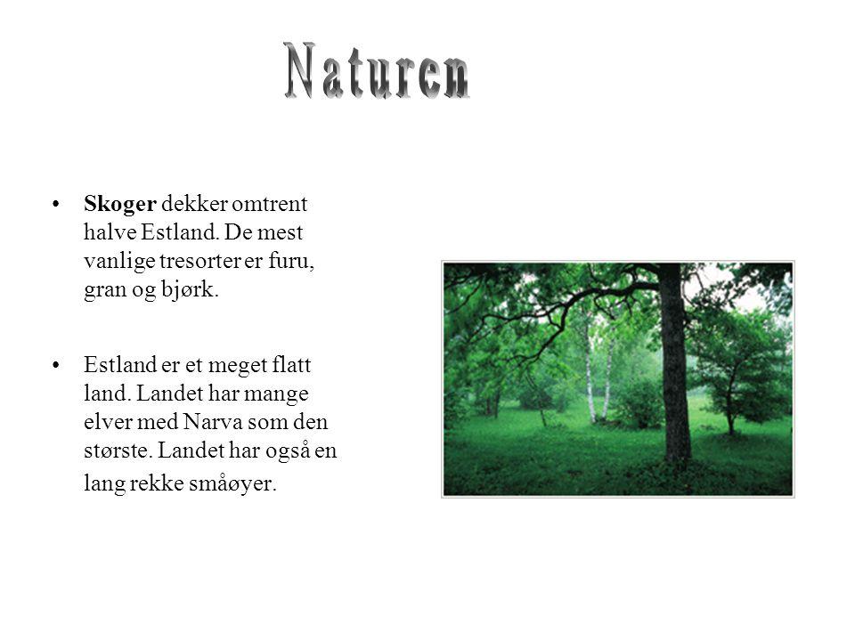 •Skoger dekker omtrent halve Estland.De mest vanlige tresorter er furu, gran og bjørk.