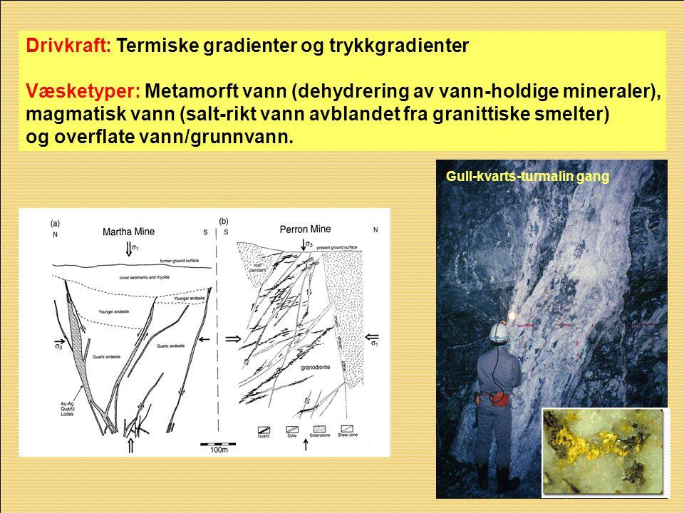Drivkraft: Termiske gradienter og trykkgradienter Væsketyper: Metamorft vann (dehydrering av vann-holdige mineraler), magmatisk vann (salt-rikt vann a