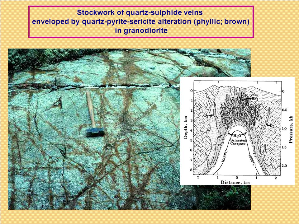 Stockwork of quartz-sulphide veins enveloped by quartz-pyrite-sericite alteration (phyllic; brown) in granodiorite