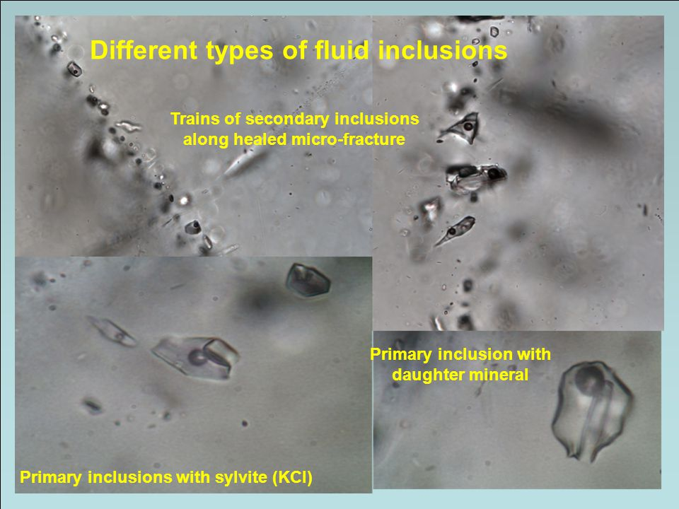 Primary inclusions with sylvite (KCl) Primary inclusion with daughter mineral Different types of fluid inclusions Trains of secondary inclusions along