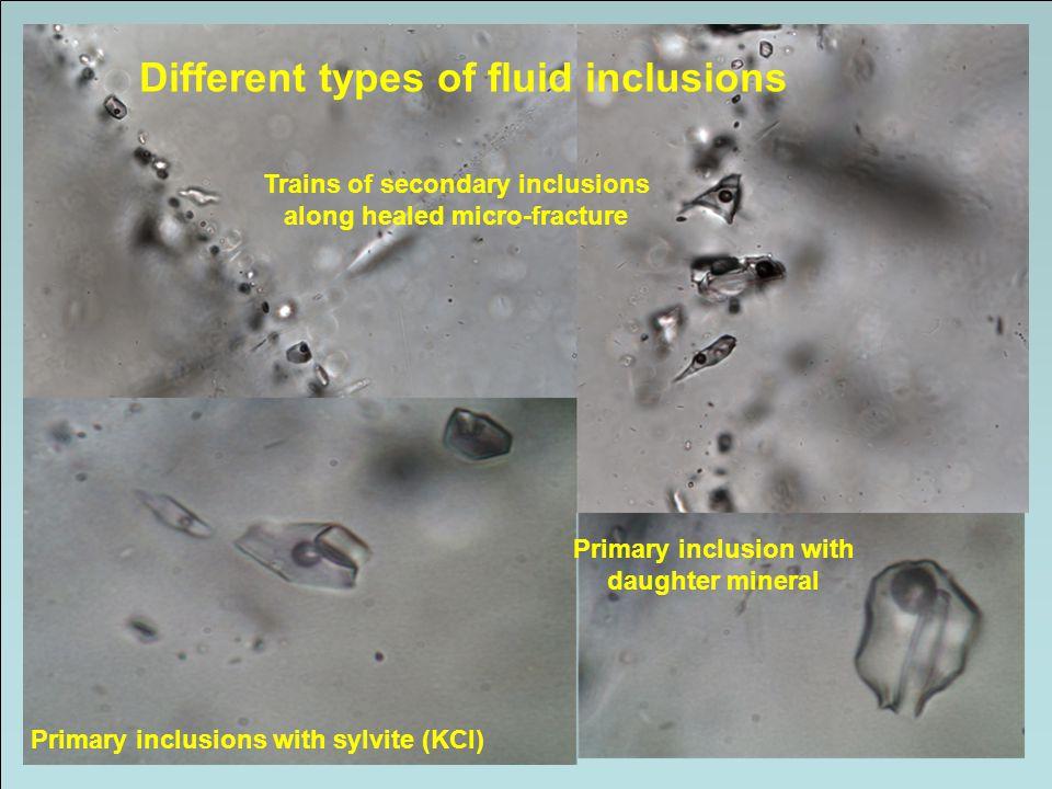 MINERALFOREKOMSTER DANNET VED HYDROTERMALE PROSESSER Viktige forekomster av metaller: Cu, Mo, Sn, W, Fe, Au, Ag, Zn, Pb Viktige forekomster av industrimineraler: Zeolitt, asbest, talk, kaolin, pyrofylitt, flusspat Endogene, hypogene, epigenetiske og (stratabundete) Avsetninger som fyller alle typer av sprekker, hulrom og rom etter utlutete mineraler
