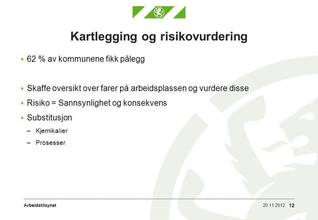 Arbeidstilsynet Kartlegging og risikovurdering • 62 % av kommunene fikk pålegg • Skaffe oversikt over farer på arbeidsplassen og vurdere disse • Risiko = Sannsynlighet og konsekvens • Substitusjon –Kjemikalier –Prosesser 20.11.2012 12