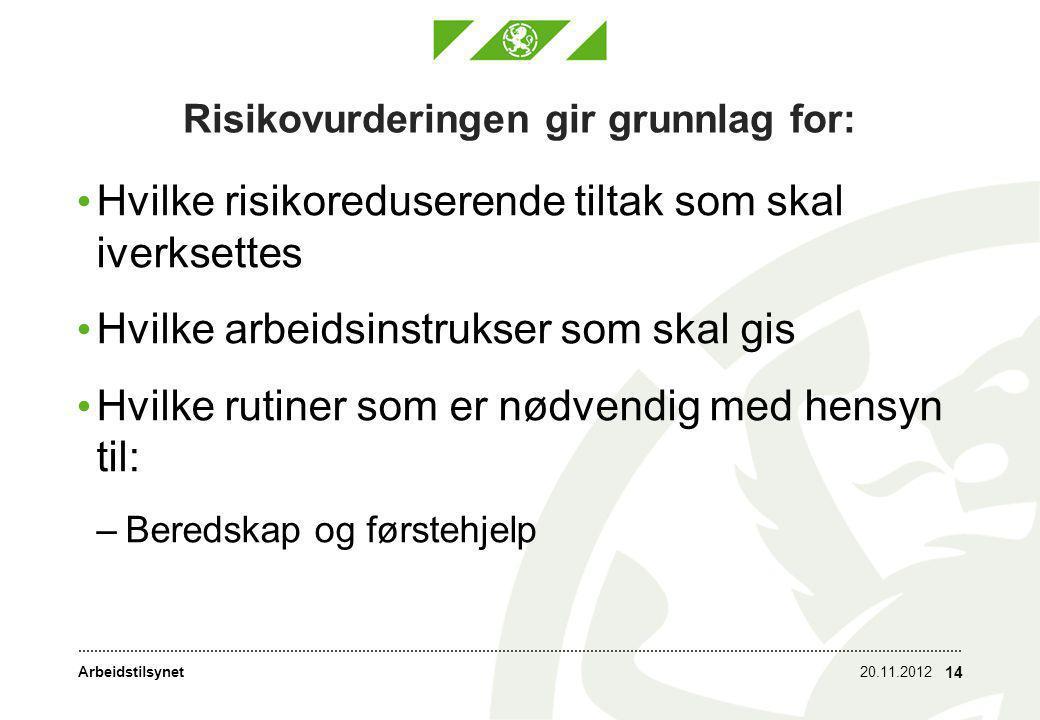 Arbeidstilsynet Risikovurderingen gir grunnlag for: • Hvilke risikoreduserende tiltak som skal iverksettes • Hvilke arbeidsinstrukser som skal gis • Hvilke rutiner som er nødvendig med hensyn til: –Beredskap og førstehjelp 20.11.2012 14