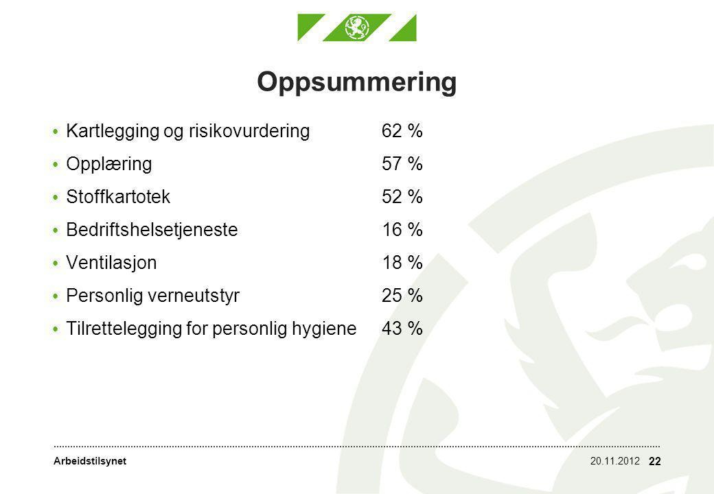 Arbeidstilsynet Oppsummering • Kartlegging og risikovurdering62 % • Opplæring57 % • Stoffkartotek52 % • Bedriftshelsetjeneste16 % • Ventilasjon18 % •