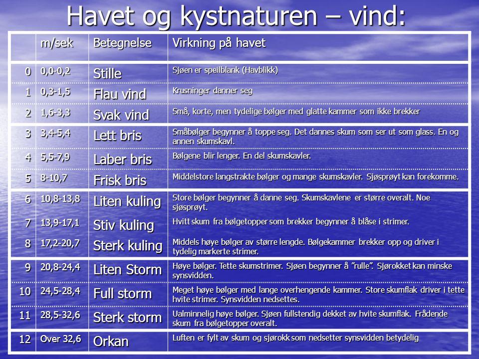 Havet og kystnaturen – vind: m/sekBetegnelse Virkning på havet 00,0-0,2Stille Sjøen er speilblank (Havblikk) 10,3-1,5 Flau vind Krusninger danner seg