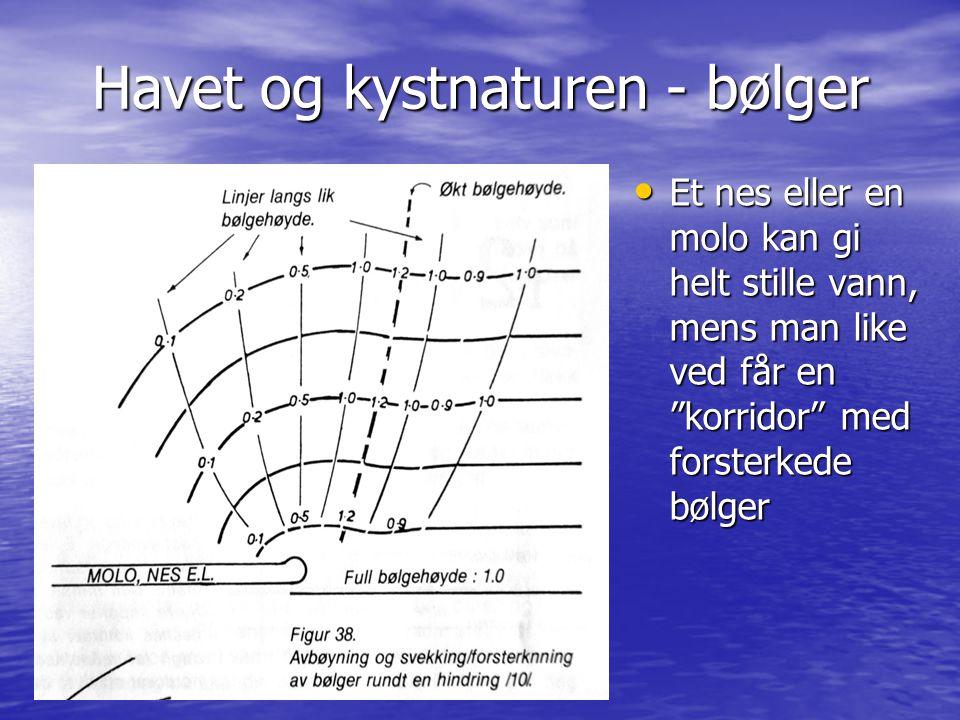 """Havet og kystnaturen - bølger • Et nes eller en molo kan gi helt stille vann, mens man like ved får en """"korridor"""" med forsterkede bølger"""