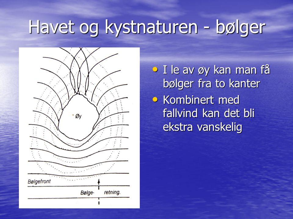 Havet og kystnaturen - bølger • I le av øy kan man få bølger fra to kanter • Kombinert med fallvind kan det bli ekstra vanskelig