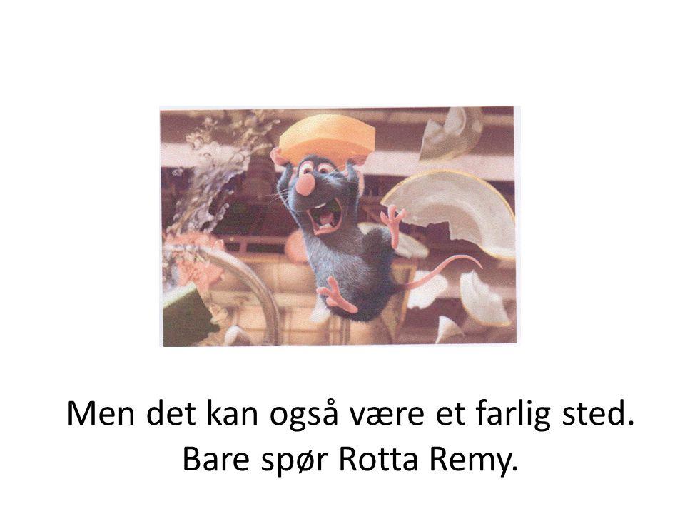 Her ser vi en gutt som heter Linguini.Rotta Remy hjelper ham å lage mat på en trygg måte.