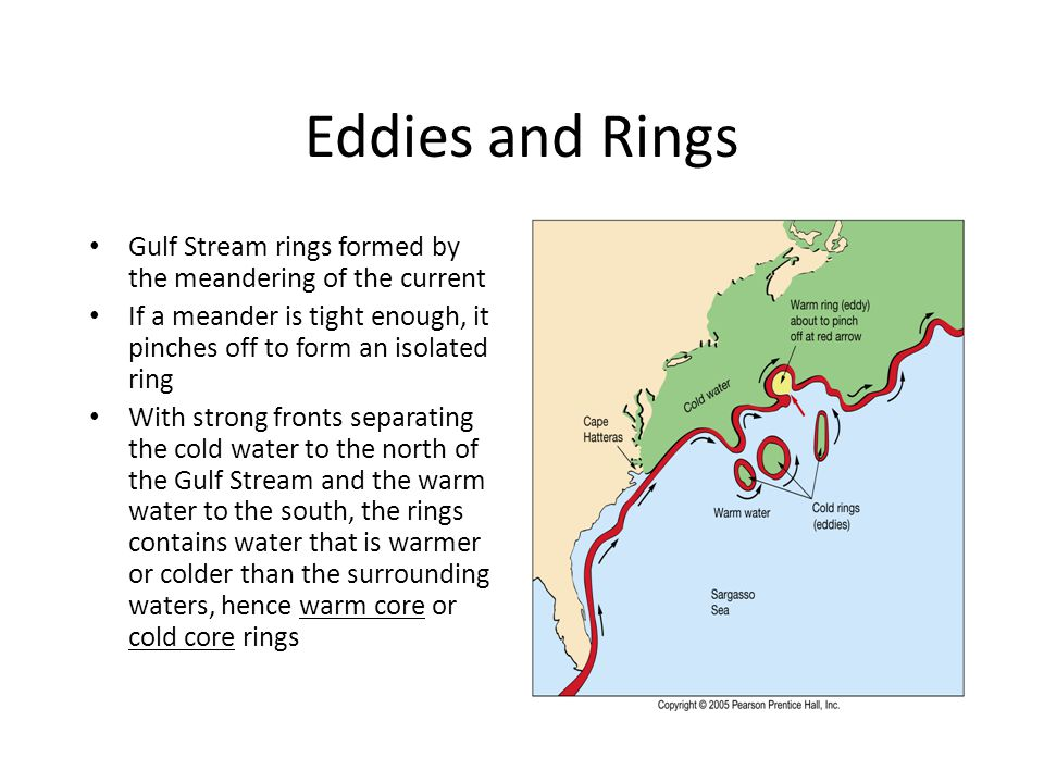 Eddies and Rings • Gulf Stream rings formed by the meandering of the current • If a meander is tight enough, it pinches off to form an isolated ring • With strong fronts separating the cold water to the north of the Gulf Stream and the warm water to the south, the rings contains water that is warmer or colder than the surrounding waters, hence warm core or cold core rings